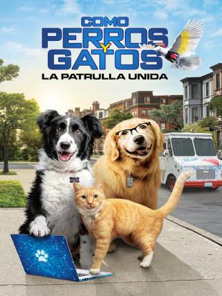COMO PERROS Y GATOS 3